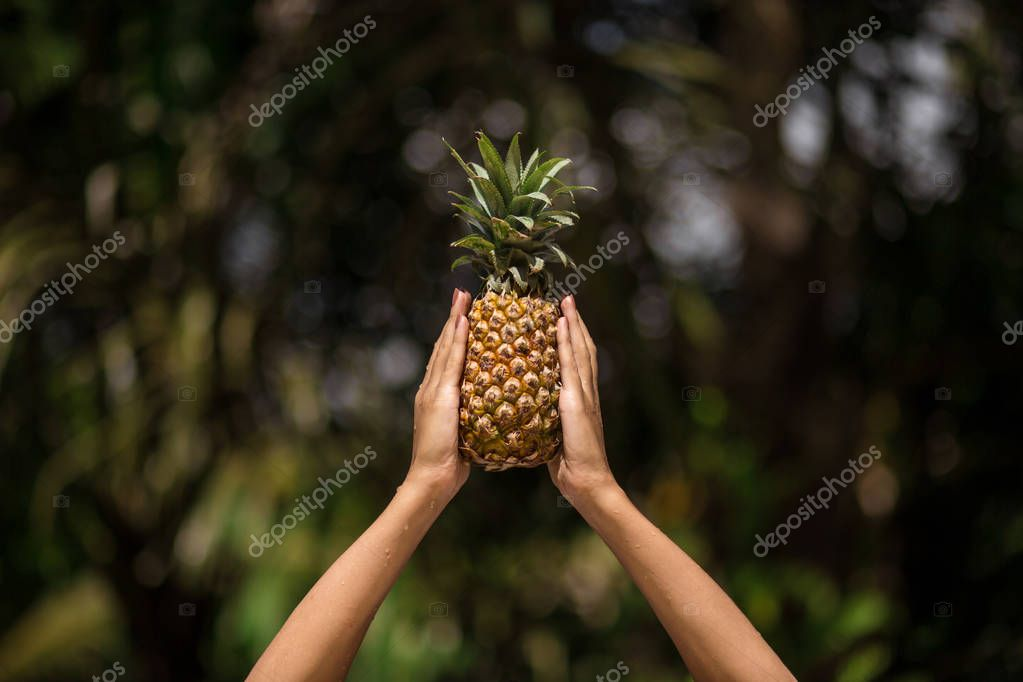 female hands holds pineapple on green tropical jungle background.