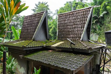 Unusual architecture of small houses with high tiled roofs in the jungle of Asia