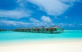 Fotografie tropical beach in Maldives with few palm trees and blue lagoon