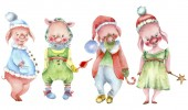 Cute piglet collection