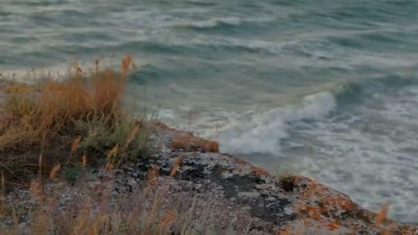 Rock s grasss a moře
