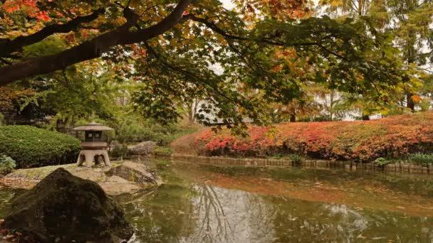 Japonská zahrada s rybníkem Cinemagraph