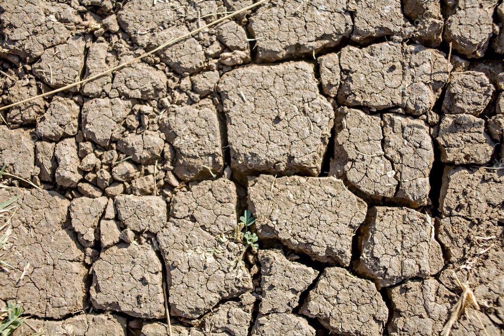 Desert soil cracked . Waterless arid dirt. Global warming