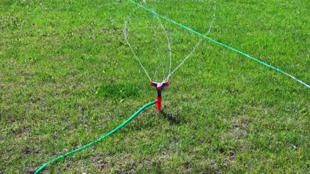Lawn sprinkler irrigation