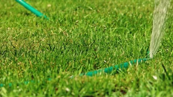 Vodní postřikovač zalévání výstřelu trávníku