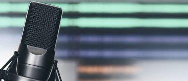 Professional condenser studio microphone. Audio record concept