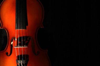 Nice violin closeup on black background under beam of light