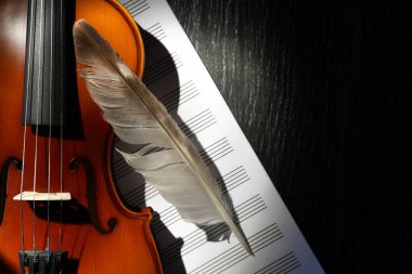 Nice violin and feather on music book against dark background