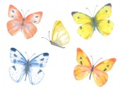 Photo colorful collection of delicate butterflies. watercolor painting