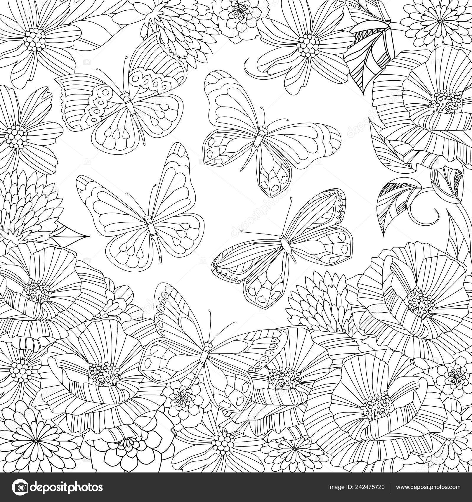 Flying Butterflies Blossom Garden Your Coloring Page Stock
