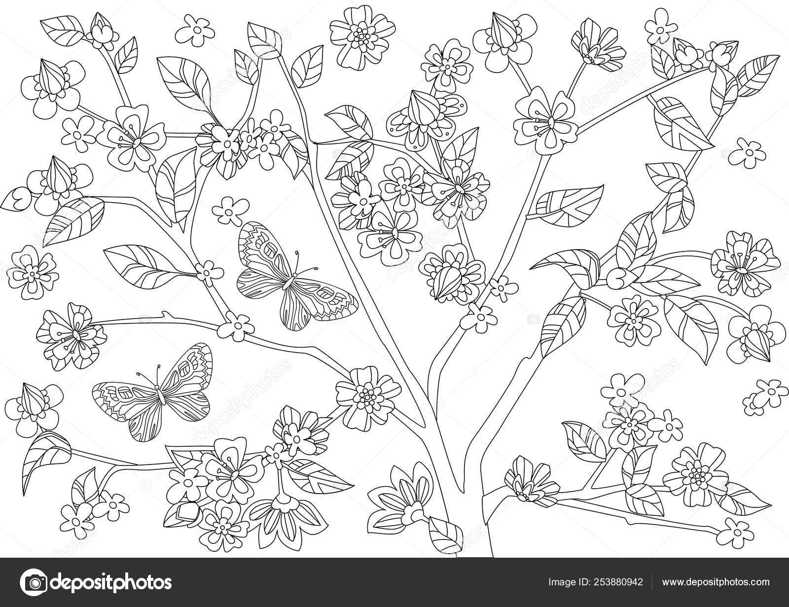 Kiraz Resmi Boyama Sayfasi Coloring Free To Print