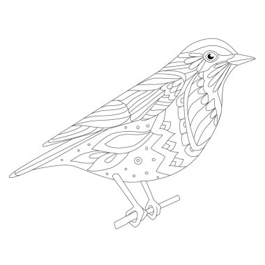 funny bird sitting on branch for your coloring page