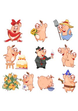 Set of pigs in different poses on white background