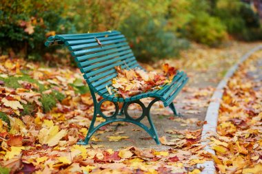 Many autumn fallen leaves on bench in Montsouris park, Paris, France on a fall day