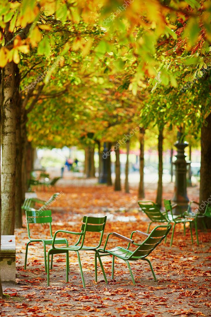 Green chairs under yellow and orange chestnut trees in Tuileries garden of Paris on a bright fall day