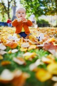 Fotografie Cute little baby girl having fun on beautiful fall day. Child playing in park at very first autumn. Kid gathering yellow fall foliage. Outdoor autumn activities for children