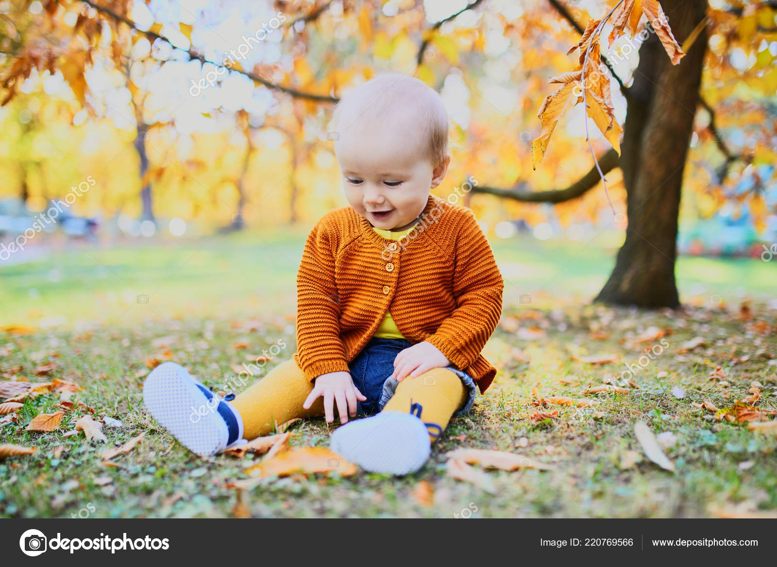 Cute little baby girl having fun beautiful fall day child stock photo