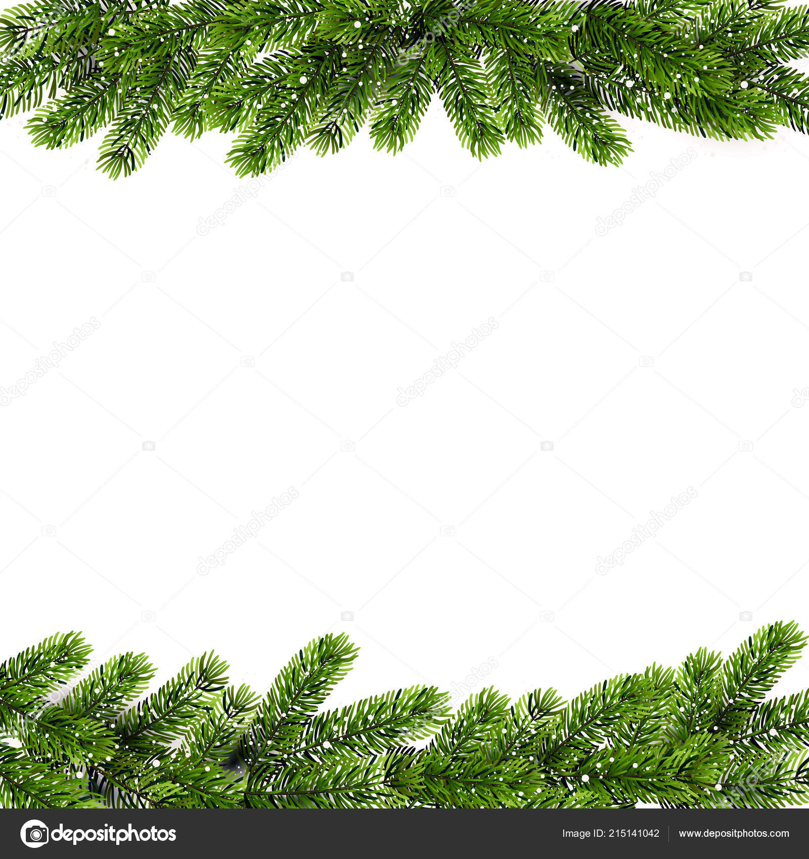 Christmas Branch Vector.Christmas Background With Green Pine Branches Vector