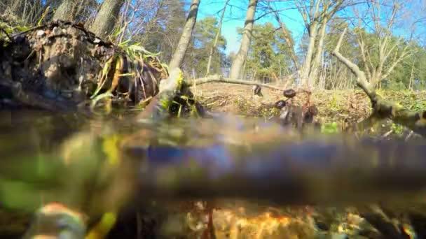Pramen potoka pod vodou, naklonění