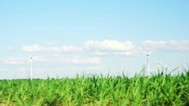 Wind turbines and green plants, focus on wind generators