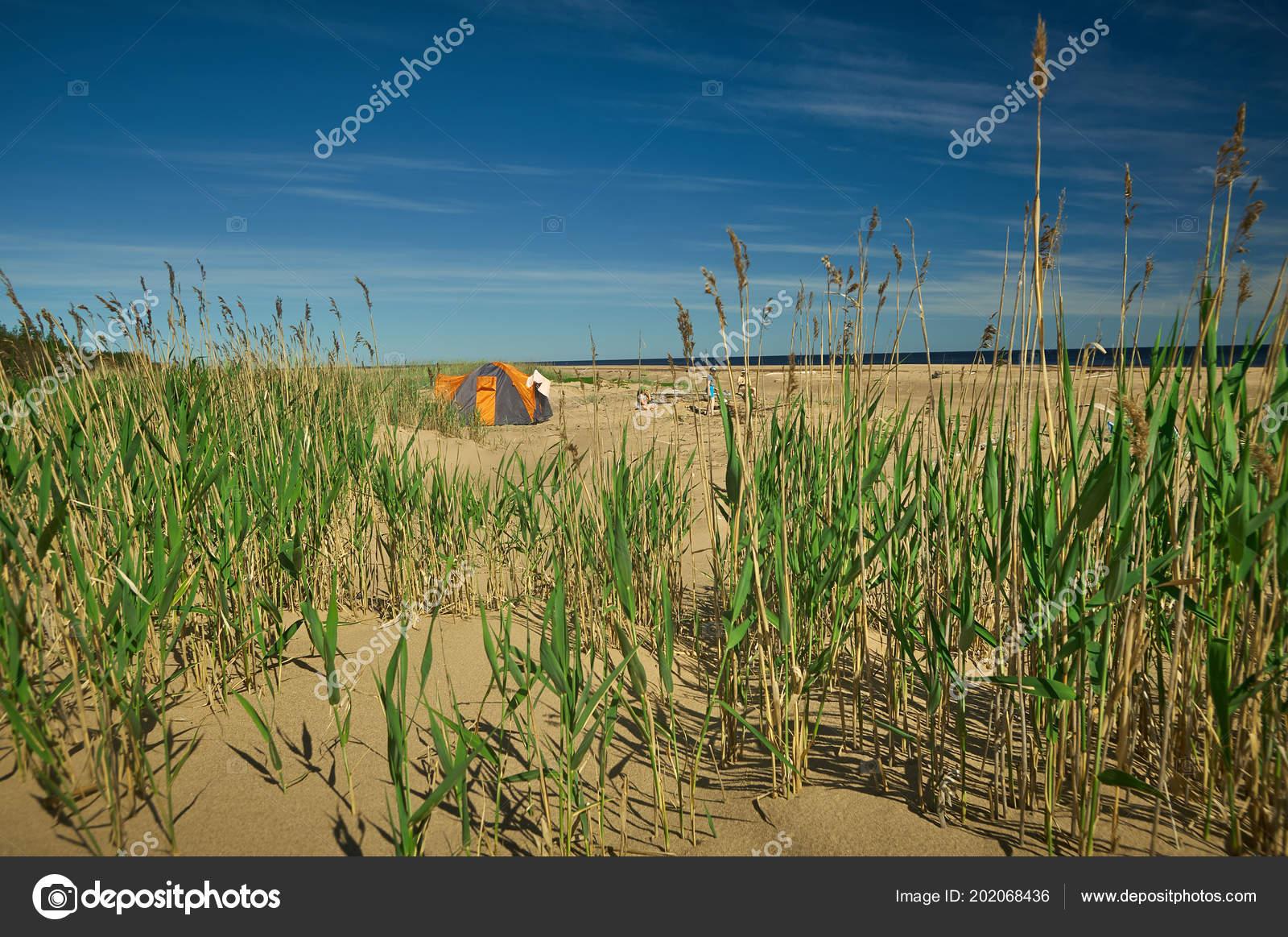 f22c492b6 Familia Feliz Acampar Fuera Carpa Playa — Foto de stock © fanfon ...
