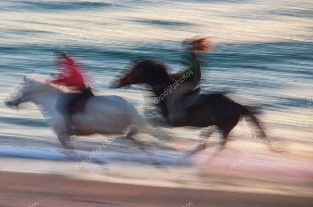 Horse moving on the sea. Speed motion scene.