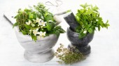 Mix of garden fresh herbs for  healthy cooking