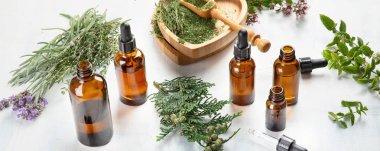Bottles of essential oils. Herbal medicine. Aromatherapy.