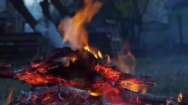 Detailní záběr bonfire flames táboráku na zahradě