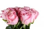 Fotografia bouquet di rose rosa isolato su sfondo bianco