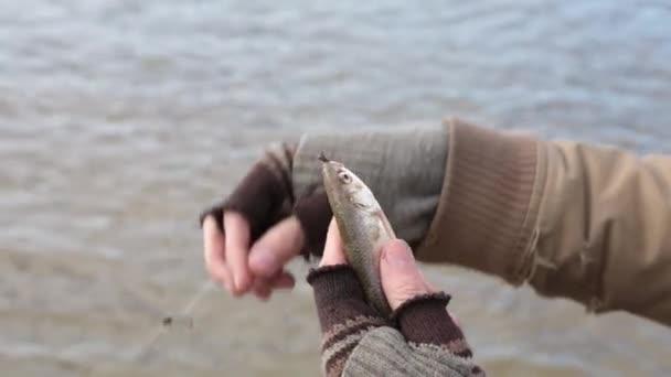 Muži v otrhaných šatech drží chytil roach ve svých rukou a obdivoval ji. Bere se ryby off háku, to nečekaně vyklouzne