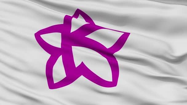 Vértes Komódi Gyula város zászló, Shizuoka, Japán prefektúra