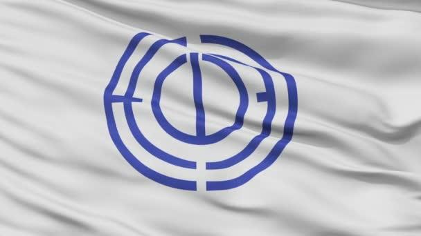 Nahaufnahme tateyama city flag, präfektur chiba, japan