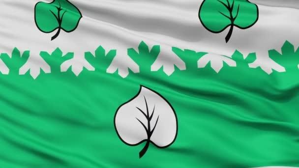 Closeup Aloja městská vlajka, Lotyšsko