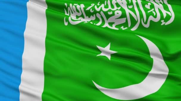 Jamaat E Islami Pákistán vlajky detailní bezešvá smyčka