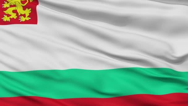 Bulgaria Naval Ensign Flag Closeup Seamless Loop