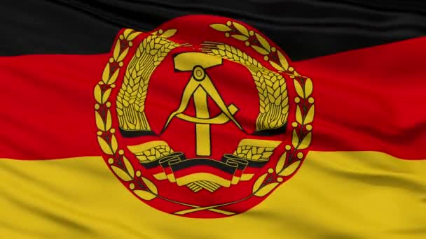Nva East Germany Flag Closeup Seamless Loop