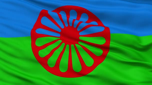 Romani People Flag Closeup Seamless Loop
