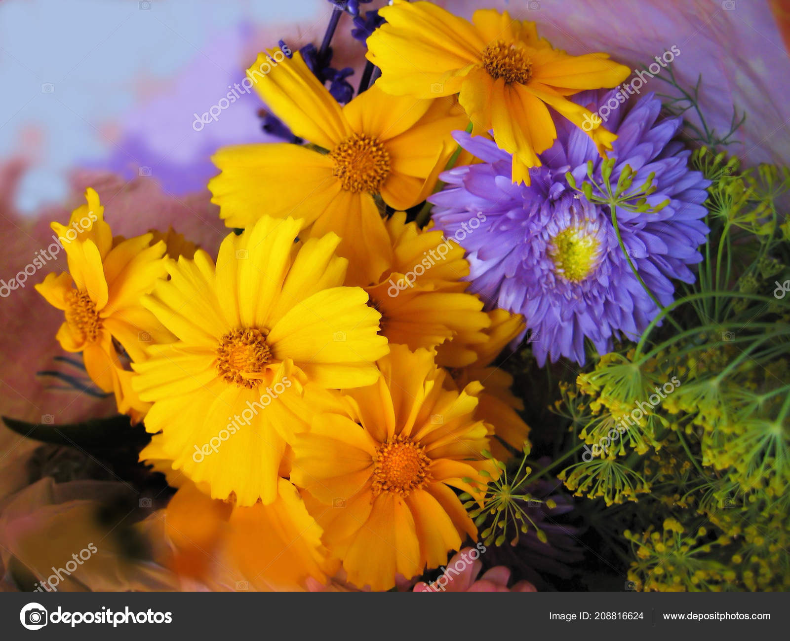 Bouquet Beautiful Bright Flowers Close Stock Photo Dink101
