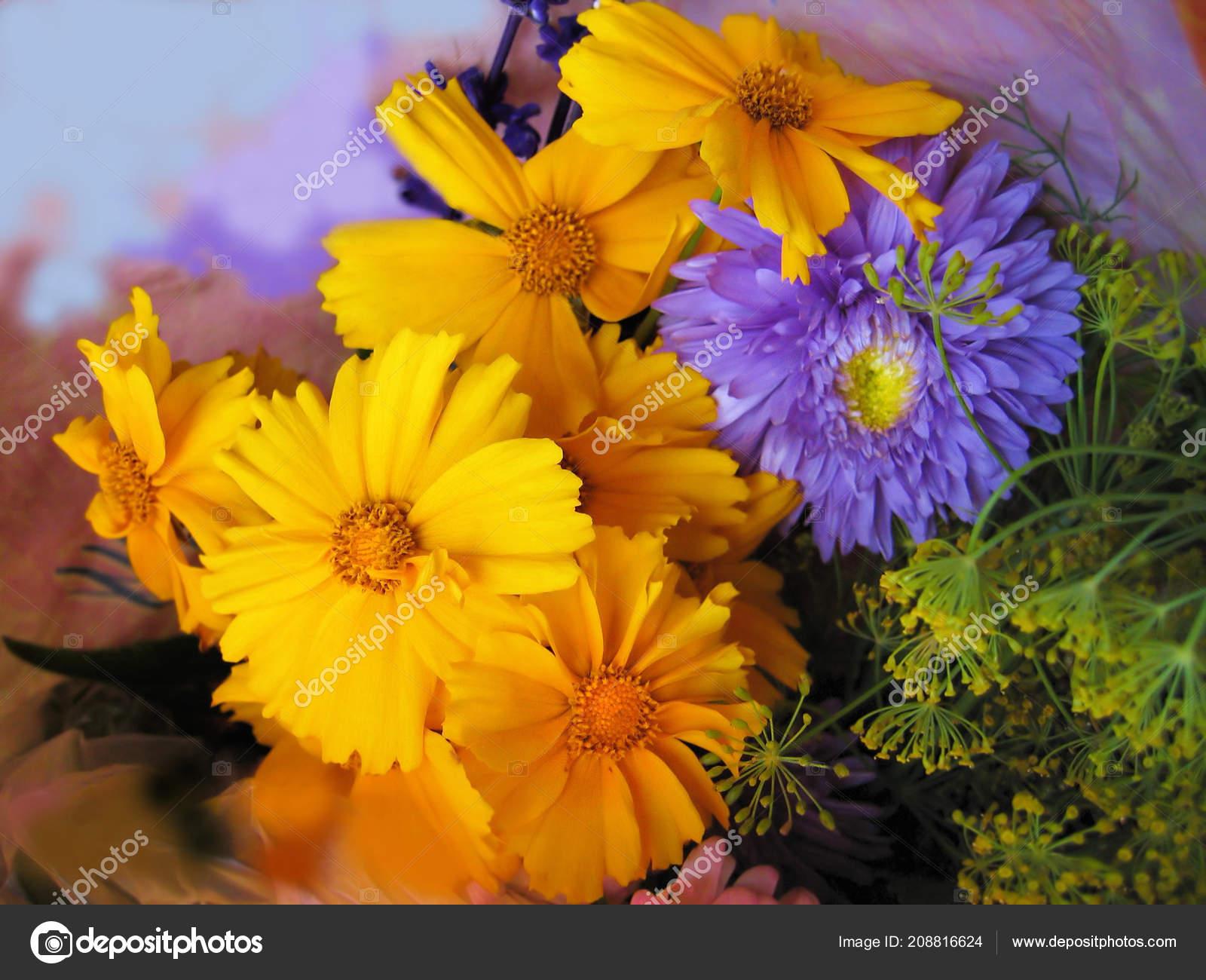 Bouquet Beautiful Bright Flowers Close Fotos De Stock Dink101