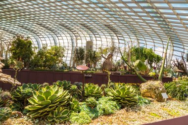 SINGAPORE - JUNE 23, 2018: Conservatory Flower Dome in Singapore at summer day