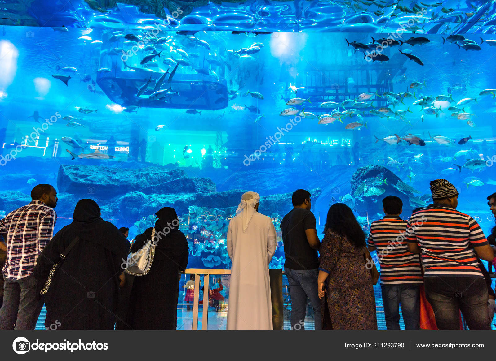 Dubai Uae June 2018 Aquarium Dubai Mall World Largest ...