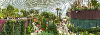 SINGAPORE - JUNE 23, 2018: Panorama of Conservatory Flower Dome in Singapore at summer day