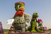 DUBAJ, UNITED ARAB EMIRATES - 31. června 2020: Dubajská zázračná zahrada za slunečného dne, Spojené arabské emiráty