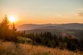 Krajina hor v Evropě Karpatské přírody večer v létě