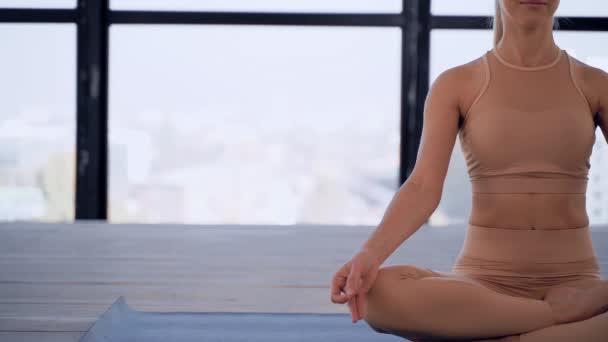 Jóga Indoor. Sportovní rekreace. Krásná mladá žena v ruce mudra a namaste pózovat pro meditaci. Individuální sporty. Akt sportovní oblečení.