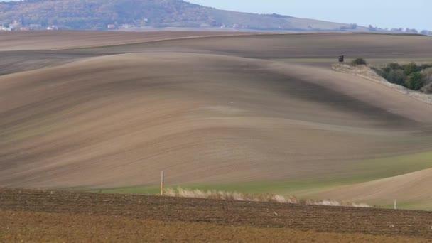South Moravian autumn fields