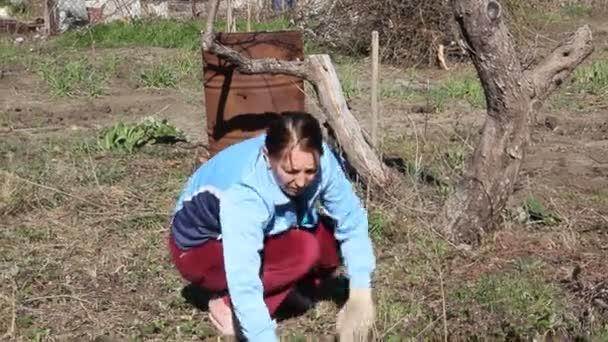 Žena pracuje v zahradě a odstraňuje trávu ze země. Kontrola plevelů na organické farmě. Zemědělec Odstraňuje plevel, mladé rostliny