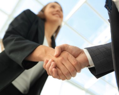 Successful businessmen handshaking after good deal. stock vector