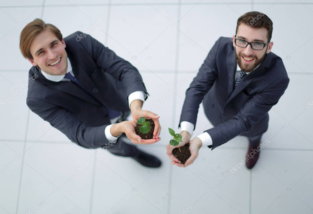 top view.two smiling businessmen with green sprout